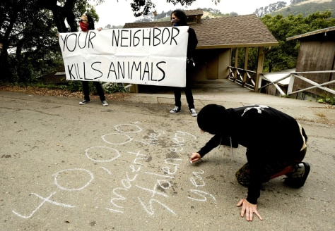 Image: Animal rights activists demonstrate