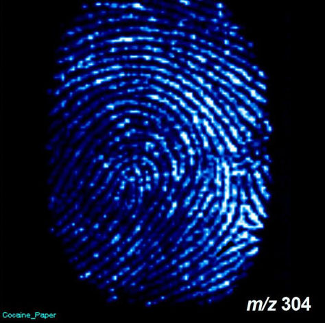 Image: Fingerprint