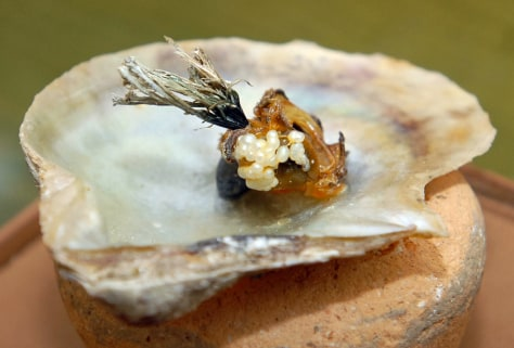 Image: Oyster shell with pearls found in Lebanon
