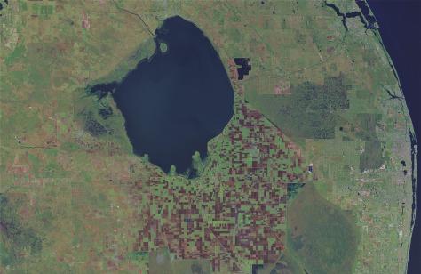 Image: Lake Okeechobee