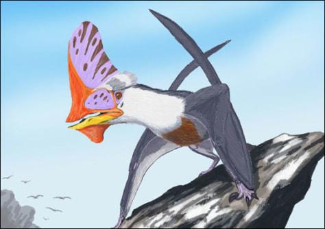 Image: Tapejara pterosaur
