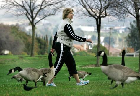 Image: Rita Horiguchi goes through her morning walk