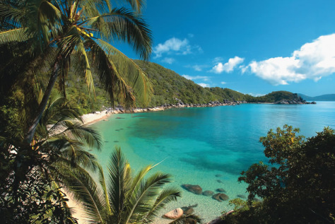 Image: Bedarra Island