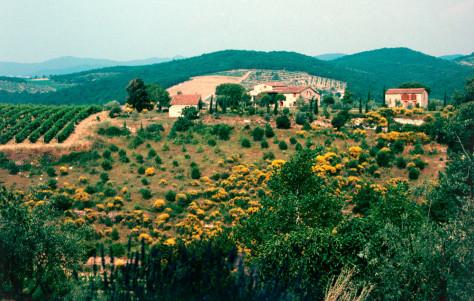 Image: Tuscany countryside