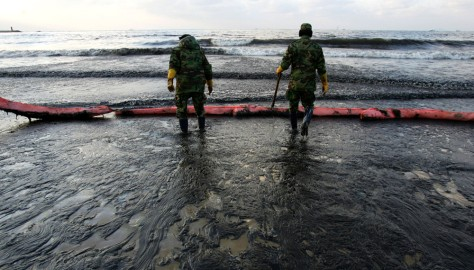 Image: Oil spill cleanup in South Korea