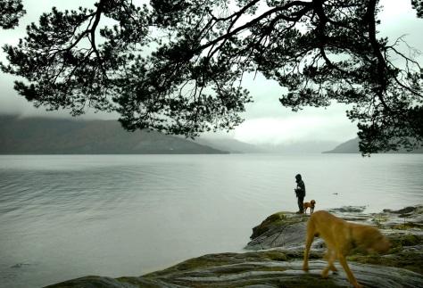 Image: Loch Lomond