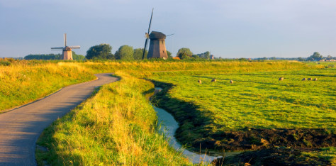 Image: Holland windmills