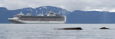 Image: Cruise ship in Alaska