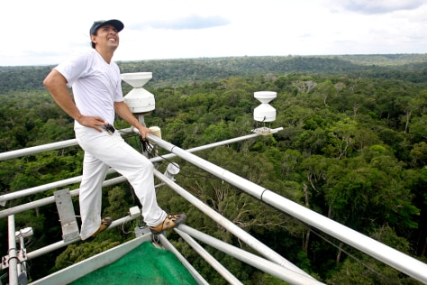 IMAGE: RESEARCHER ON TOWER ABOVE AMAZON TREES