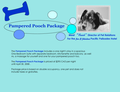 Image: Pet-friendly hotel packages