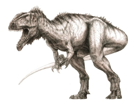 Image: Meat-eating dinosaur