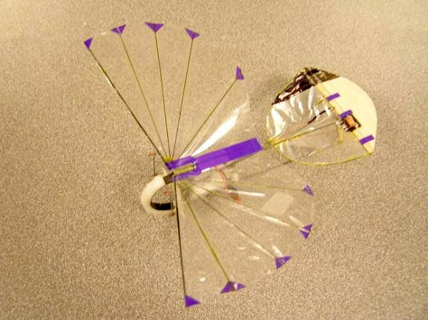 Image: Micro air vehicle