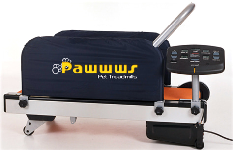 Image: Pet treadmill