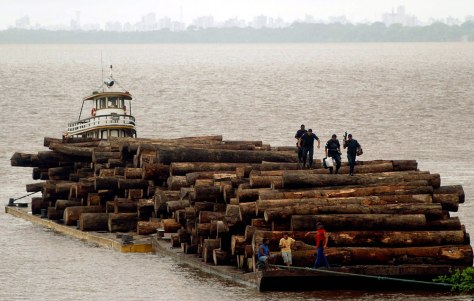 Image: Brazilian police guard a raft loaded with confiscated logs