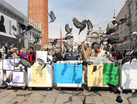 Image: Pigeon feed-sellers protest