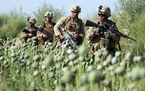 Image: Marines in Afghan poppy field