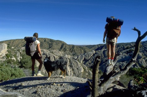 Image: Hikers and dog