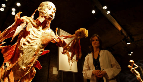 Image: Visitor at body exhibition