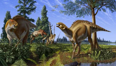 Image: Duckbilled dinosaurs