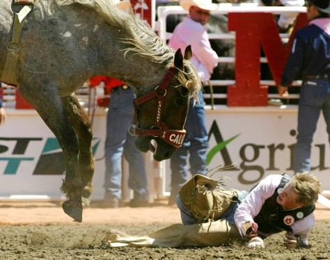 Image: Bucked by the bronc