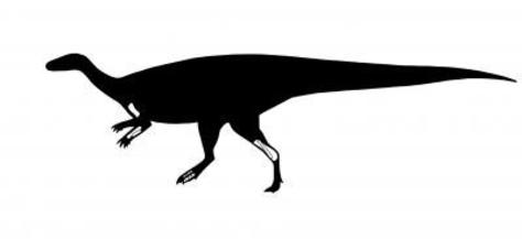 Image: Sustut dinosaur