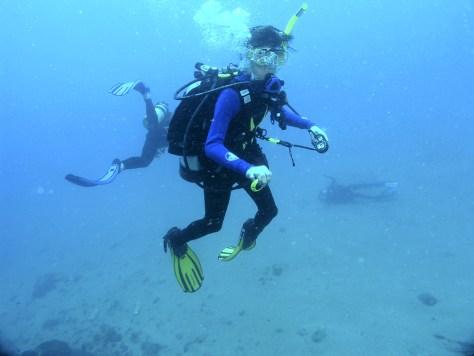 Image: Scuba divers