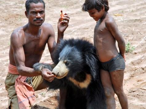 Image: Ram Singh Munda, 35, and his daughter feed their pet sloth bear