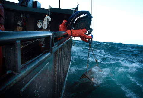 Deadly job shows try to catch the wave today for How to get a fishing job in alaska