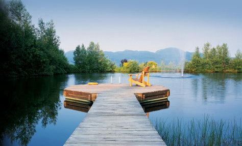 Image: Dock in a lake