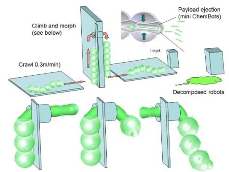 Image: Chembot caterpillar