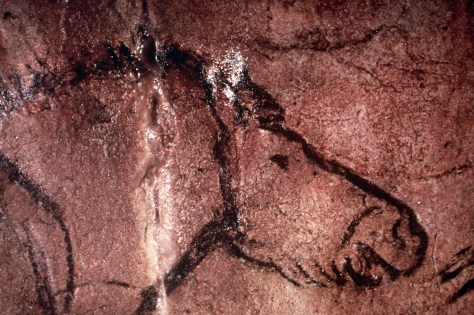 Image: Prehistoric cave art of a horse in Lascaux, France