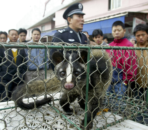 A CONFISCATED CIVET CAT PACES INSIDE A CAGE AT A WILD GAME MARKET IN GUANGZHOU