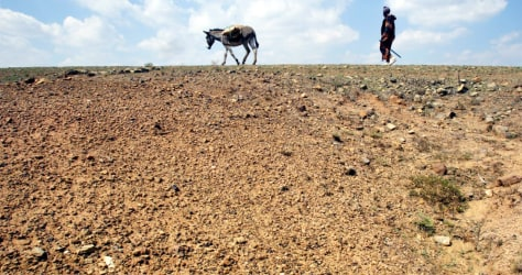 Image: Lesotho drought