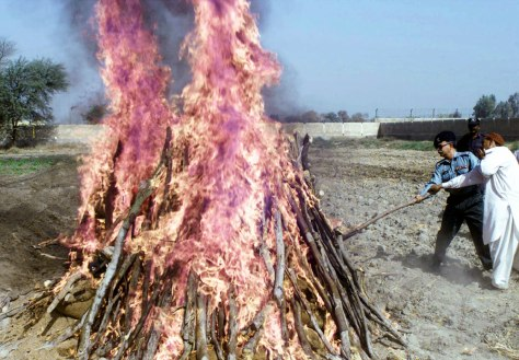 IMAGE: PAKISTANI OFFICIALS TORCH SEIZED NARCOTICS IN SUKKUR
