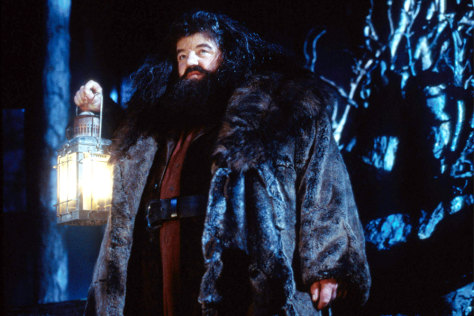 chat flashback the cinematic debut of rubeus hagrid community
