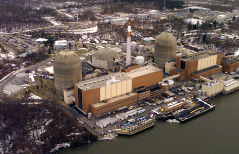 INDIAN POINT NUCLEAR PLANTS
