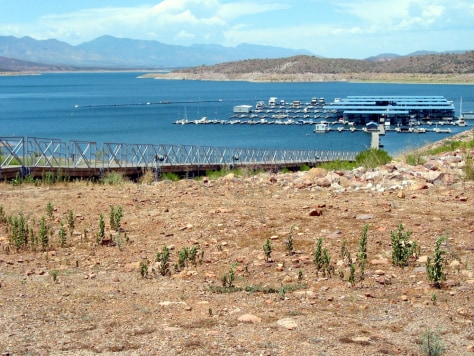 LOW WATER LEVEL AT ROOSEVELT LAKE