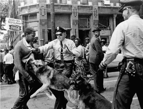 DOG ATTACKS CIVIL RIGHTS DEMONSTRATOR