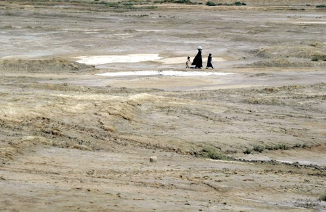 Image: Qurnah marsh