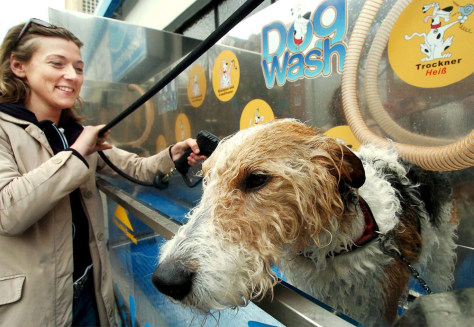GERMANY DOG WASH