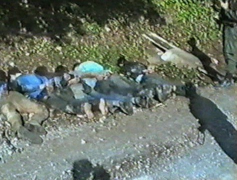 Image: Bound Bosnian prisoners.