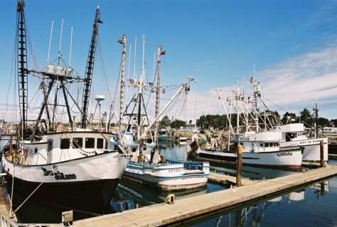 IMAGE: GROUNDFISH TRAWLERS