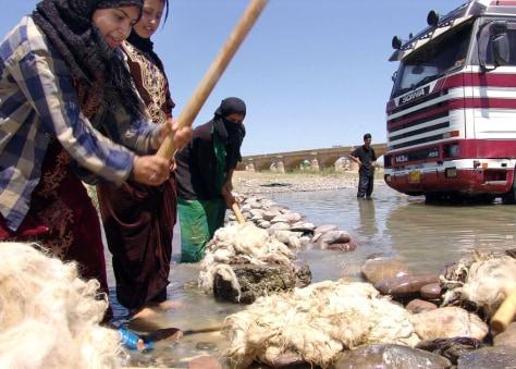 Image: Iraqi woment