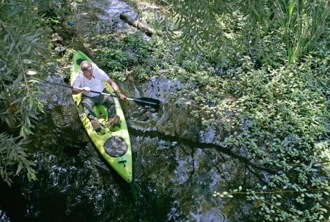 Image: Machado Lake