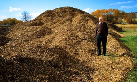 IMAGE: WOOD CHIPS USED FOR ENERGY
