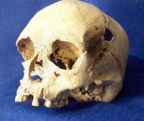 """Image: """"Luzia"""" skull"""