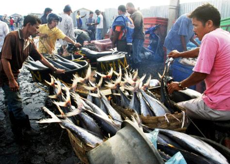 Tsunami still taking toll on environment - US news ...