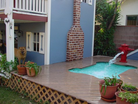 Pet Friendly Homes For Your Furry Family Health Pet