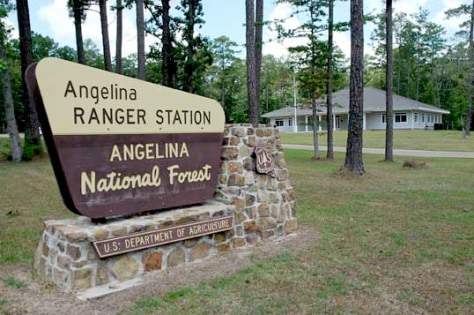 IMAGE: ANGELINA NATIONAL FOREST SIGN