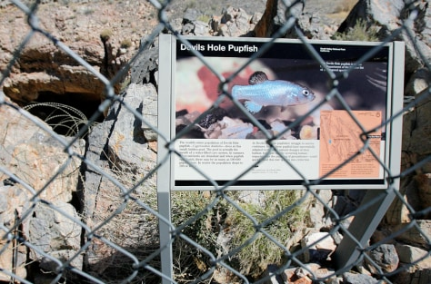 IMAGE: SIGN FOR PUPFISH